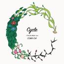 Cycle/COMA-CHI