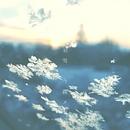 羽雪/今路メグ