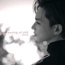 Meaning of LIFE/強太