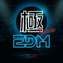 極EDM - Top Club Hits/Various Artists