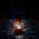 Lightless/AMNESIA