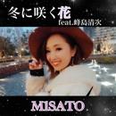 冬に咲く花 (feat. 峰島清次)/M1SATO