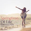 Springtime Of Life - Piano Bossa Nova/Love Bossa