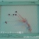 グリーンティーの魔力/IZUMI FLOWER