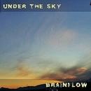Under the sky/BRAINFLOW