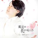魔法の花が咲くとき ~DAIKI MUSIC COLLECTION~/桃乃カナコ