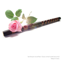 Solo Dragon-voiced Flute / Classics & My Favorite Songs Vol.2/工藤高義