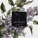 fall into a lilac slumber/Annabel