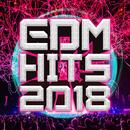 EDM HITS 2018 -ドライブで聴きたい爽快ダンスミュージック-/SME Project