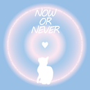 NOW OR NEVER/EVAmplifier