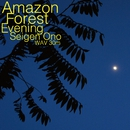 Amazon Forest Evening 30 [192kHz]/オノ・セイゲン