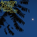 Amazon Forest Evening 60 [96kHz]/オノ・セイゲン