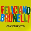 Grandes Éxitos/Feliciano Brunelli