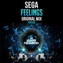 Feelings/Sega