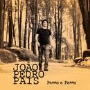 Passo a Passo/Joao Pedro Pais