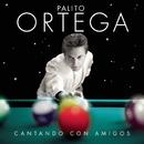 Cantando Con Amigos/Palito Ortega