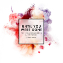 Until You Were Gone feat.Emily Warren/The Chainsmokers & Tritonal