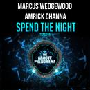 Spend The Night/Marcus Wedgewood & Amrick Channa