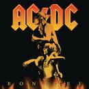 Bonfire Box/AC/DC