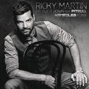 Mr. Put It Down ((Noodles Remix)[Dub Mix]) feat.Pitbull/Ricky Martin
