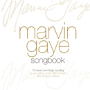 The Best Of/Marvin Gaye