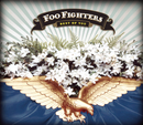 Best Of You/Foo Fighters