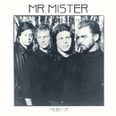 The Best Of/Mr. Mister