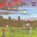 Welcome To The Real World/Mr. Mister