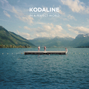 In A Perfect World (Deluxe)/Kodaline