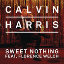 Sweet Nothing (Diplo + Grandtheft Remix) feat.Florence Welch/Calvin Harris