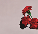 Love In The Future/John Legend
