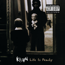 Life Is Peachy/Korn