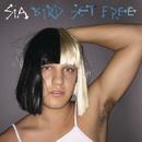 Bird Set Free/Sia