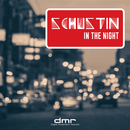 In the Night/Schustin