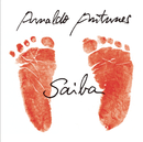 Saiba/Arnaldo Antunes