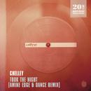 Took The Night (Amine Edge & DANCE Remix)/Chelley