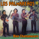 Bien Chamamecero/Los Palmareños