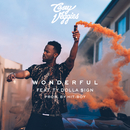 Wonderful feat.Ty Dolla $ign/Casey Veggies