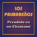Prendido en un Chamamé/Los Palmareños