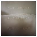 Dragonfly feat.MAX/Malinchak