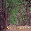 In Dreams/Peter Hollens
