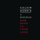How Deep Is Your Love/Calvin Harris & Disciples