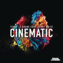 Cinematic (Radio Edit) feat.Denny White/Fedde Le Grand