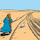 Det svarta guldet/Tintin