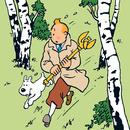 Kung Ottokars spira/Tintin