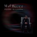Mad World/Peter Hollens