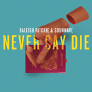 Never Say Die/Raleigh Ritchie