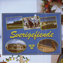 Sverigefiende (Fest mot våldsgrupp)/Promoe