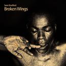 Broken Wings/Sean Bradford