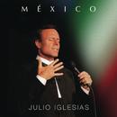 Usted/Julio Iglesias